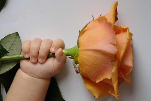 Лев, Элиза иЕва: какие еще редкие имена дают своим детям оренбуржцы