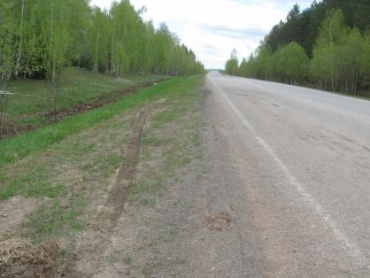 Поспорили онаследстве: вОренбургской области раскрыли свирепое убийство жителя Казани