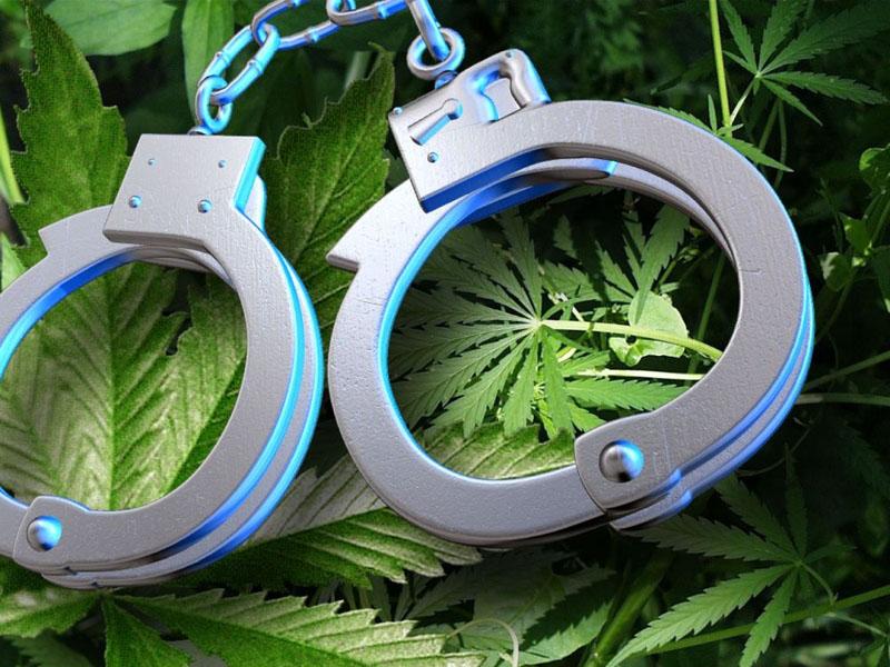 ВОренбурге вынесли вердикт продавцам амфетаминов— Наркотики через приложение