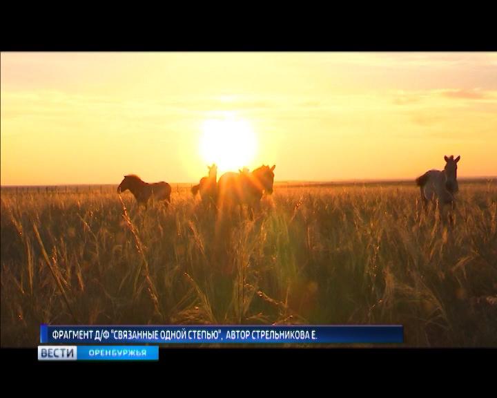 Локтевский район новости горняка