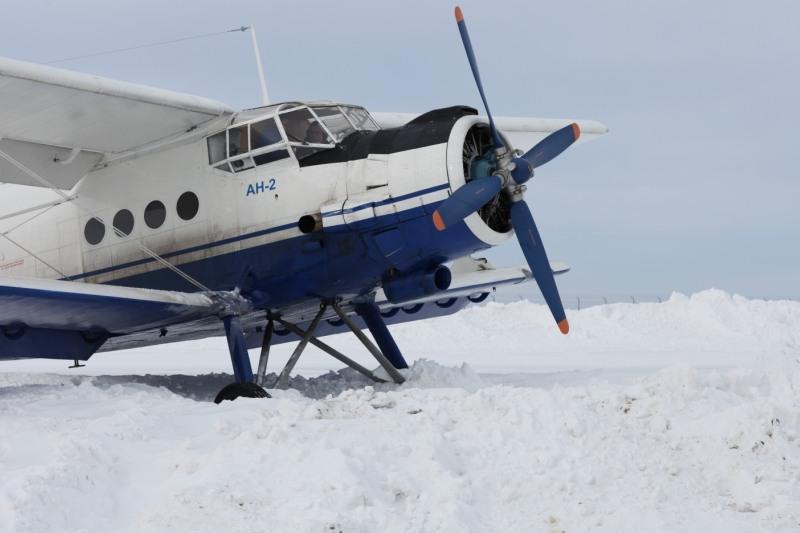Самолет Ан-2 понеустановленной причине экстренно приземлился вСеверном районе