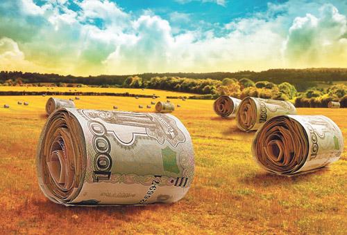Самарская область получит 367 миллионов рублей на поддержку и развитие сельского хозяйства